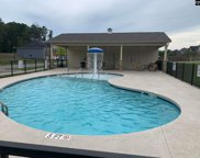 456 Lever Hill Road Unit Lot 59, Chapin image