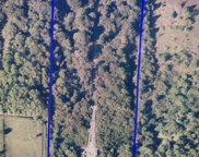 4225 Grant Road, Grant Valkaria image