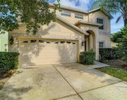 10538 Coral Key Avenue, Tampa image