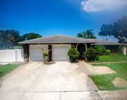 7102 Lawnview Court, Tampa image