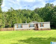 456 Mountain Terrace, Odenville image