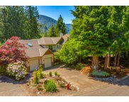 25951 E BRIGHT  AVE, Welches image
