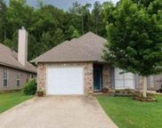 4100 Forest Lakes Road, Sterrett image