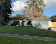 3606 Greenrock Place, Valrico image