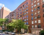 711 W Gordon Terrace Unit #116, Chicago image