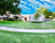 15912 Dover Cliffe Drive, Lutz image