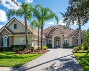 11904 Royce Waterford Circle, Tampa image