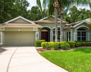 12240 Woodlands Circle, Dade City image