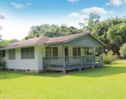 146 Private Road 8196, Woodville image