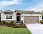13353 Waterleaf Garden Circle, Riverview image