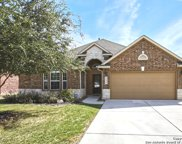 10618 Larch Grove Ct, Helotes image