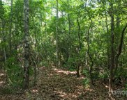 20.5 Acres Old Fort  Road, Black Mountain image
