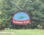 Lot 9  Stillwater Cover, Double Springs image