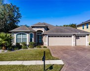 2738 Silvermoss Drive, Wesley Chapel image