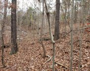 Lot 0 Highway 156, South Pittsburg image