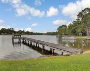 1198 MOULTRIE DR, Manning image
