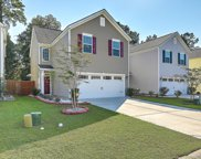 9012 Cat Tail Pond Road, Summerville image