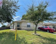 13000 Jelly Palm Trail, Elgin image