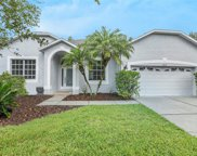 10626 Grand Riviere Drive, Tampa image
