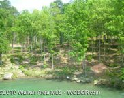 Lot # 38  Osprev Ave, Arley image