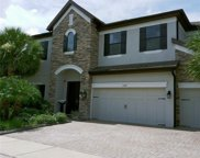 13817 Moonstone Canyon Drive, Riverview image
