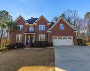 12 Cypress Springs Court, Chapin image