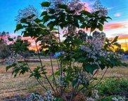 3463  Baseline Road, Roseville image