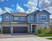 18809 Birchwood Groves Drive, Lutz image