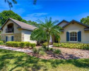 5506 Branch Oak Place, Lithia image