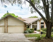 3749 Woodridge Place, Palm Harbor image