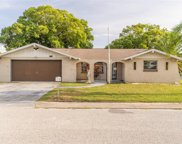 7210 Robstown Drive, Port Richey image