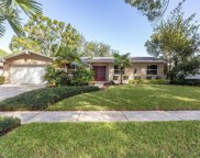 7534 Meadow Drive, Tampa image