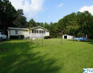 6309 County Road 77, Gaylesville image