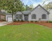 312 Willowood Parkway, Chapin image