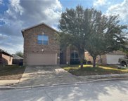 18621 Silent Water Way, Pflugerville image