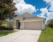 7820 Mariners Harbour Drive, Wesley Chapel image
