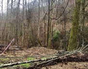 1070 Deep Hollow Rd, Gatlinburg image