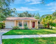1120 Willow Pines Court E, Tampa image