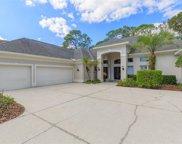 15815 Dawson Ridge Drive, Tampa image