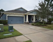 6424 Bradford Hill Court, Wesley Chapel image