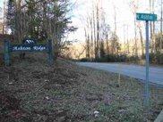 29 acres-/+ Ashton Drive, Liberty image