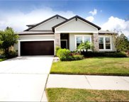 11814 Cross Vine Drive, Riverview image