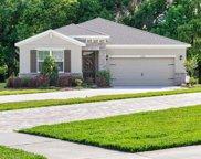 12687 Eastpointe Drive, Dade City image