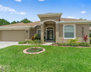 11655 Fairfield Court, Spring Hill image