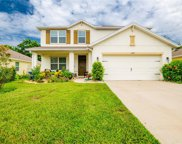 13777 Covey Run Place, Spring Hill image