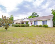 989 Stately Oaks Drive, Inverness image