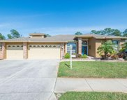 1553 Winding Willow Drive, Trinity image