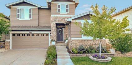 10807 Cedar Brook Street, Highlands Ranch