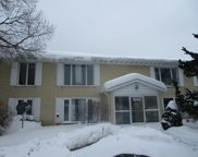 1840 W Surrey Park Lane Unit #1C, Arlington Heights image