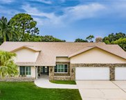 2976 Talon Drive, Clearwater image